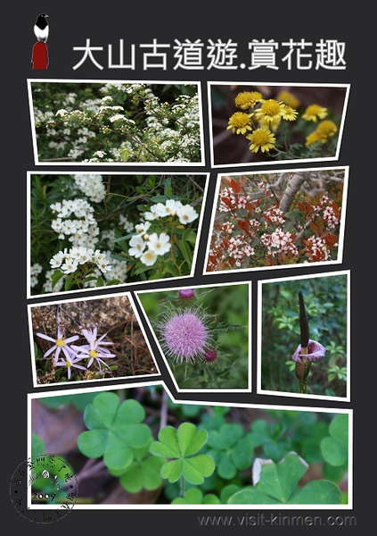 太武山植物群像