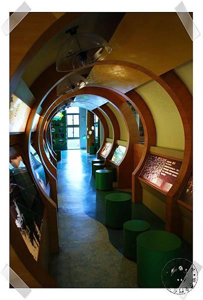 nEO_IMG_鳥類隧道.jpg