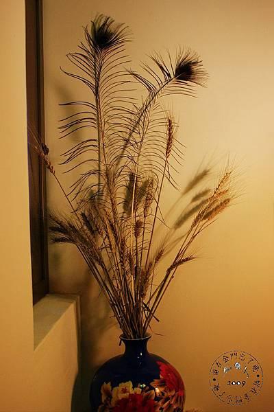 小麥與孔雀羽.jpg
