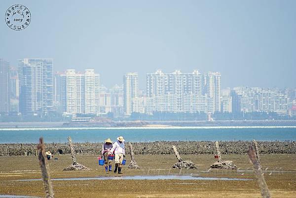 上林海岸.jpg