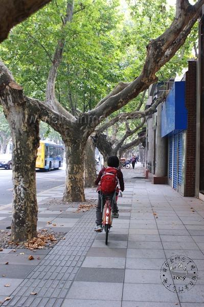 杭州自行車