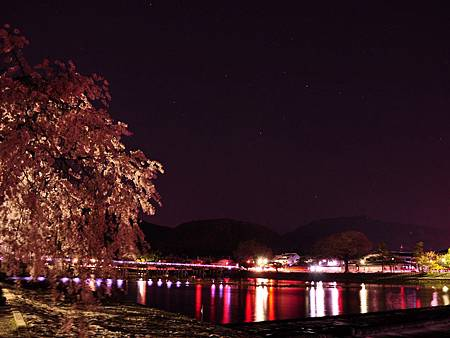 arashiyamasakura10.jpg