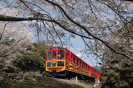 spring_04.jpg
