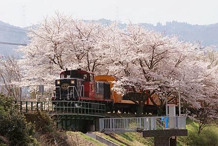 spring_06.jpg