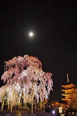 東寺-2.jpg