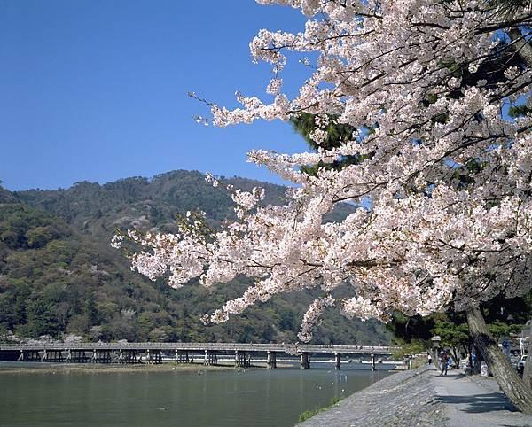 嵐山・渡月橋①.jpg