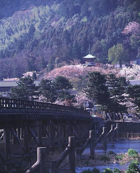 嵐山・渡月橋②.jpg