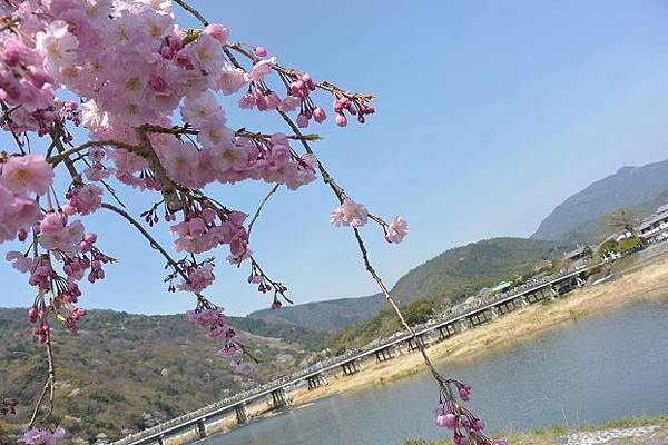 嵐山・渡月橋③.jpg