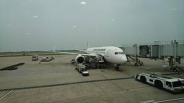 日本航空初體驗