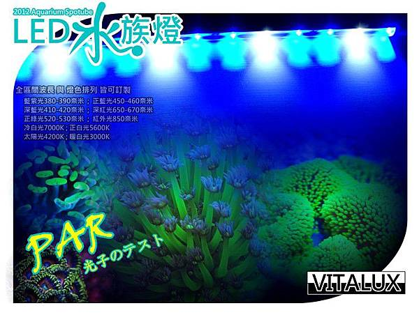 coral-led-light-tubes