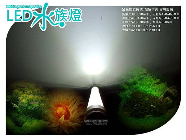 HO-LED-Tubes-aquarium