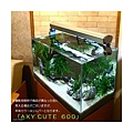 led-aquarium-fixtures