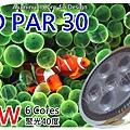 LED-par30 -aquarium-lights
