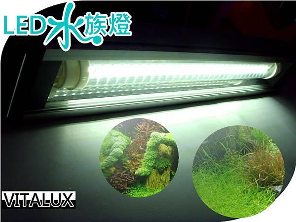 led-planted-tank-grow-light