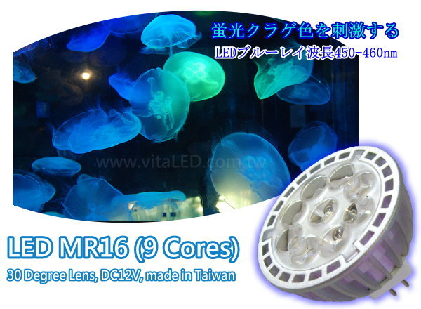 vitalux-aquarium-led-mr16