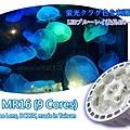 vitalux-aquarium-led-mr16