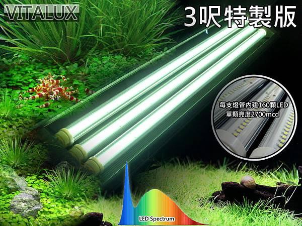 三呎LED水族燈