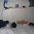 在Khongor的小床