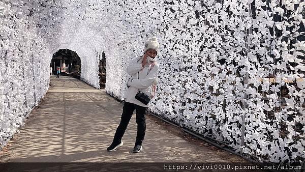 20200203韓國之旅第二天_200207_0126.jpg