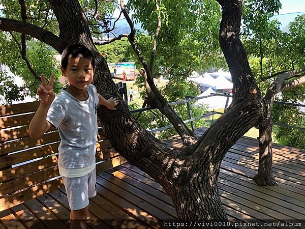台東美術館_200802_11.jpg