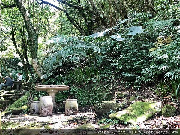 茄苳瀑布_200802_21.jpg