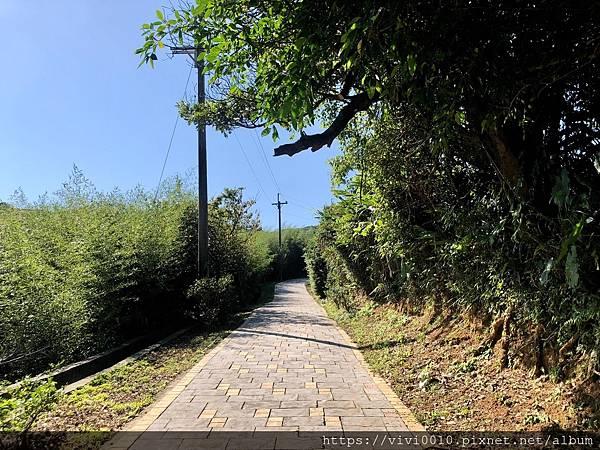 茶山步道_201005_4.jpg