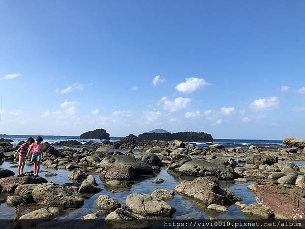 大坪海岸_201002_19.jpg