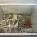 輕親魚朵_210329_68.jpg