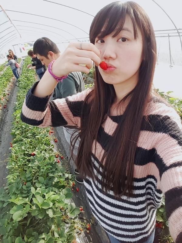 SelfieCity_20170609220444_org.jpg