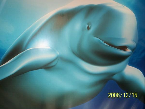 20061215屏東海洋博物館牆上的圖案^^.jpg
