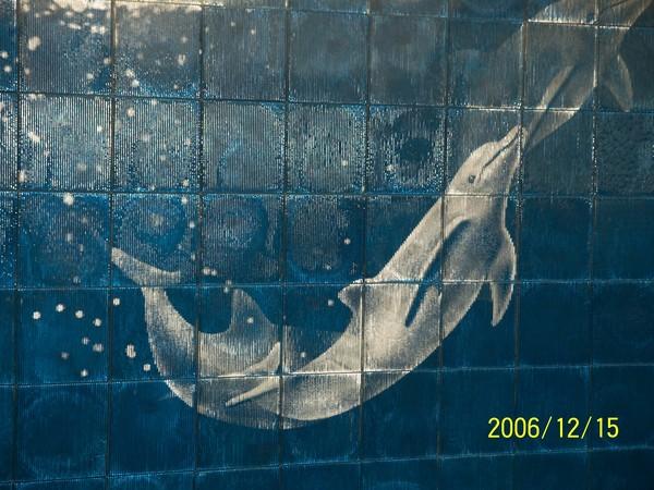 20061215屏東海洋博物館牆上的圖案^^_002.jpg