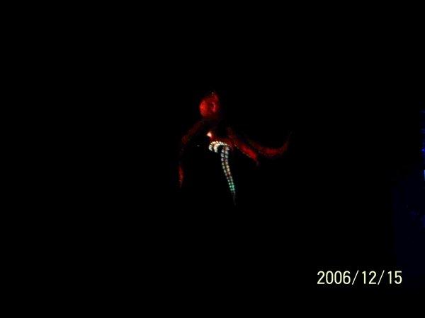 20061215屏東海洋博物館投射畫面.jpg