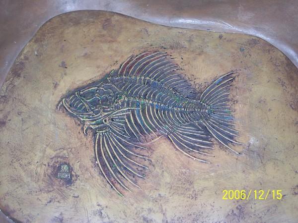 20061215屏東海洋博物館化石_001.jpg