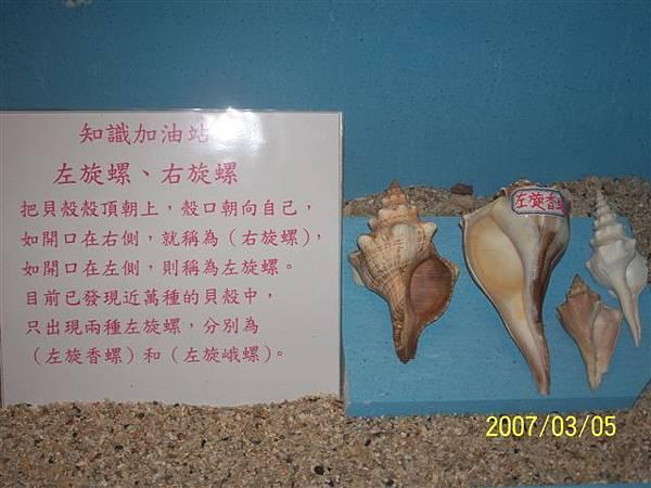 拍攝於澎湖竹灣螃蟹博物館_015.jpg