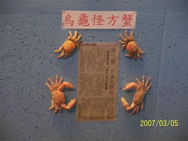 拍攝於澎湖竹灣螃蟹博物館_009.jpg