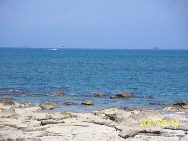 美麗的菓葉之海.jpg