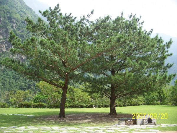 2007/9/20拍攝於太魯閣布落灣.jpg