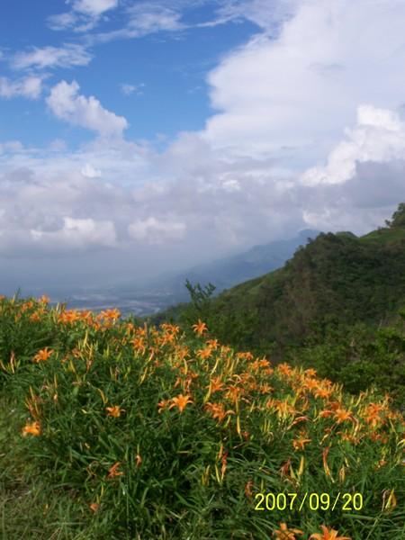 2007/9/20六十石山山嶺上的金針花_000.jpg