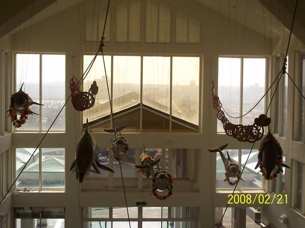 2008221拍攝於澎湖水族館_025.jpg
