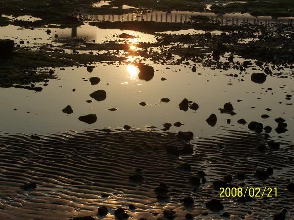 2008221拍攝於池東_003.jpg