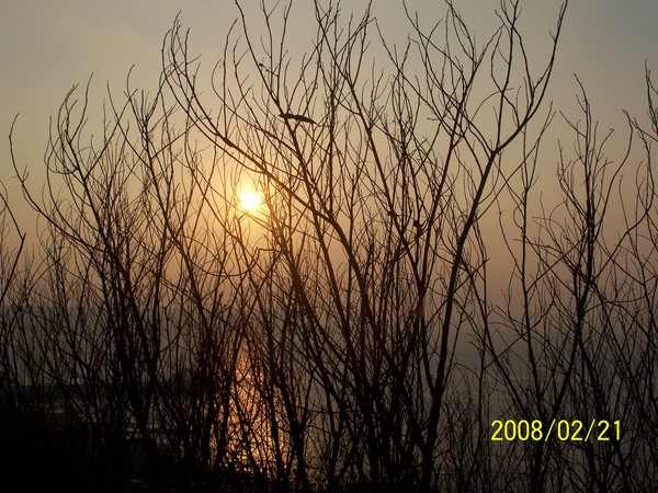 2008221拍攝於前往內垵的路上.jpg