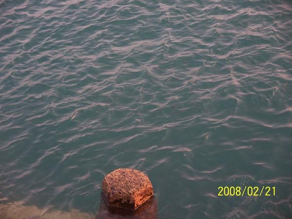 2008221拍攝於內垵碼頭_000.jpg
