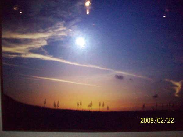 2008222翻拍於蒙地卡羅店內牆上的攝影作品.jpg