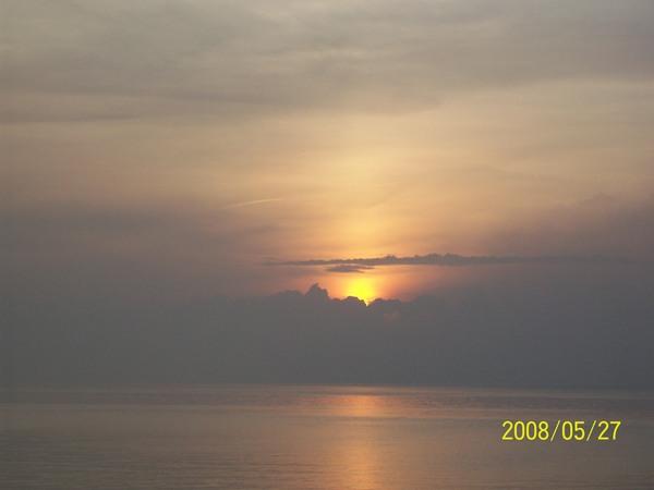 20080527菓葉的日出03.jpg