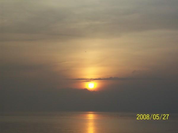 20080527菓葉的日出06.jpg