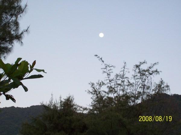 20080819拍攝於太麻里路旁某處02.jpg