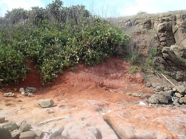 20110627拍攝於雁晴嶼005.JPG