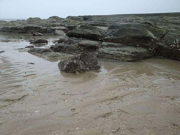 20110628拍攝於後寮沙灘035.JPG