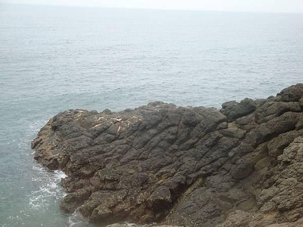 20110629拍攝於竹灣紫菜礁009.JPG