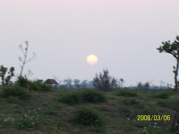 200836日拍攝於自家附近_000.jpg